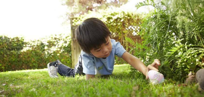 Jongen zoekt paaseieren, oudersvannature
