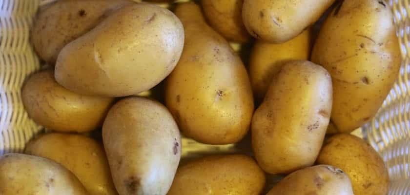 Aardappelen_in_emmers_poten