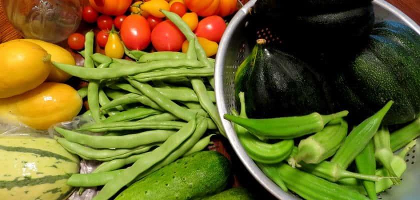 groenten uit de moestuin