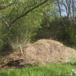 Moestuincursus les 2: hoe maak je compost?