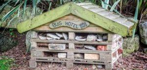 Hoe maak je een insectenhotel?