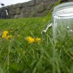 natuuractiviteit planten ademen