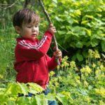 Kinderactiviteiten tijden de Ecotuindagen van Velt